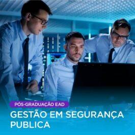 Gestão em Segurança Publica